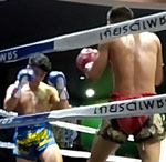 Muay Thai at the Chiang Mai Boxing Stadium