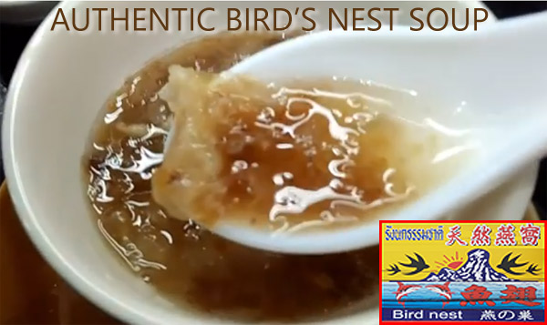 authentic bird's nest soup, Chiang Mai