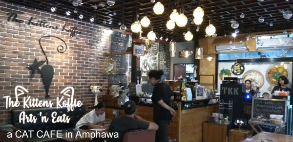 The Kittens Koffie Arts 'n Eats Amphawa